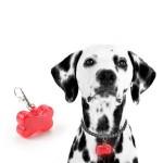Pet Safety Flashing Bone