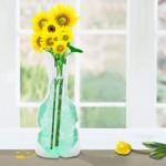 Magic Vases