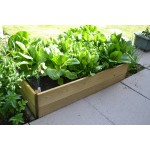 Rectangular Timber Raised Bed
