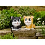 Solar Bright Eyed Cats- Twin pack