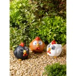 Solar Bright Eyed Happy Hens - Pack of 3